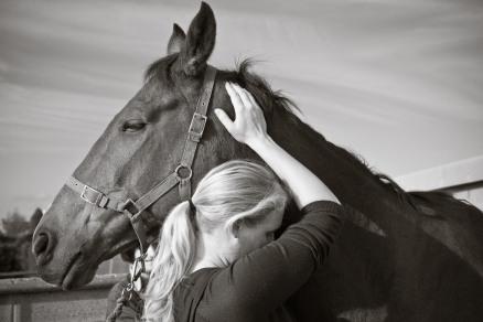 bpp bea equine chiropractic-257-2